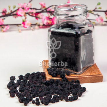aronia-owoc-watermarked