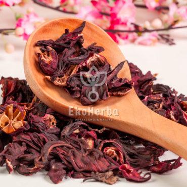 hibiskus-kwiat-watermarked